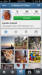 cyndies_profile