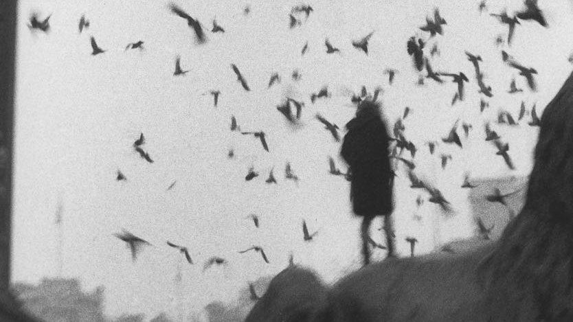 Sergio Larraín and the Photoagraphic Experience